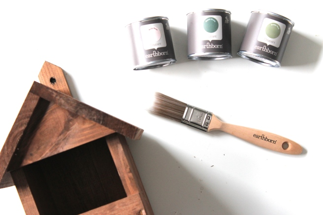 Earthborn paints bird box